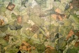 """mappings"" (detail: central)"