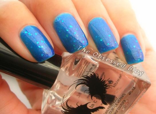 Colors_Bluebonnets