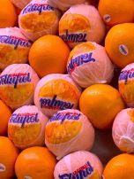 Clementine, Clementine