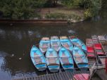 Boats and Punts on the Oxford Canal