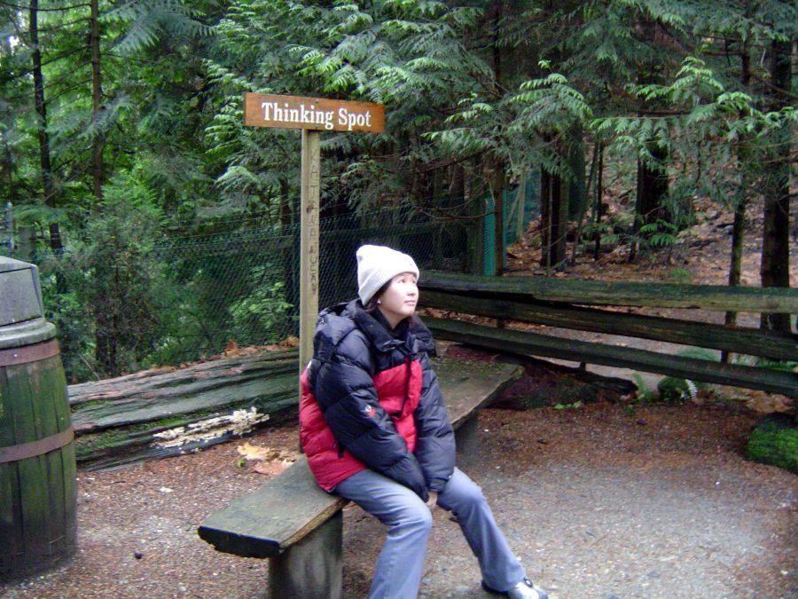Vancouver Capilano Thinking Spot