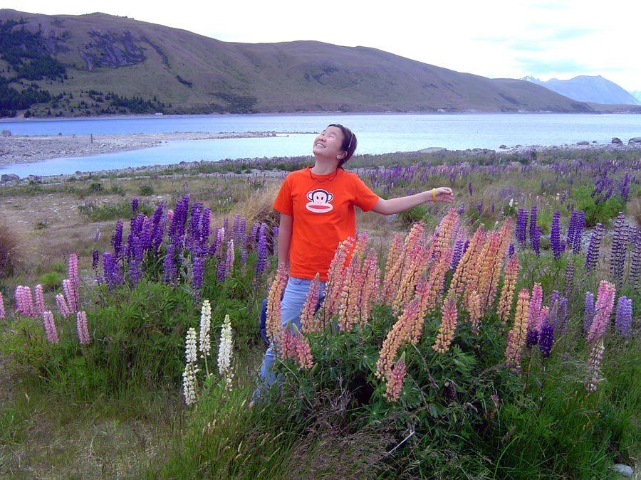 New Zealand Lake Tekapo Flowers Me