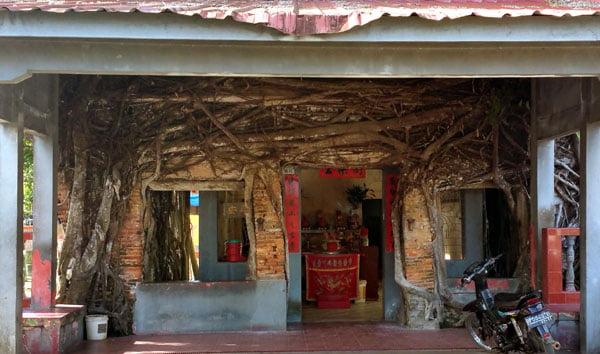 Bintan Senggarang Banyan Tree Temple