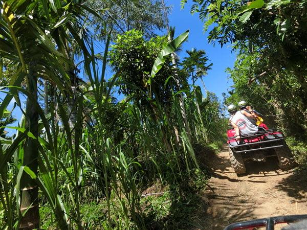 Bali Casio Quad Bike DJ Backshot