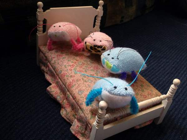 Cute Bed Bugs