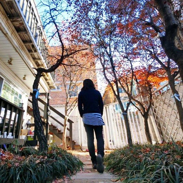Seoul Big Johns Place Garden