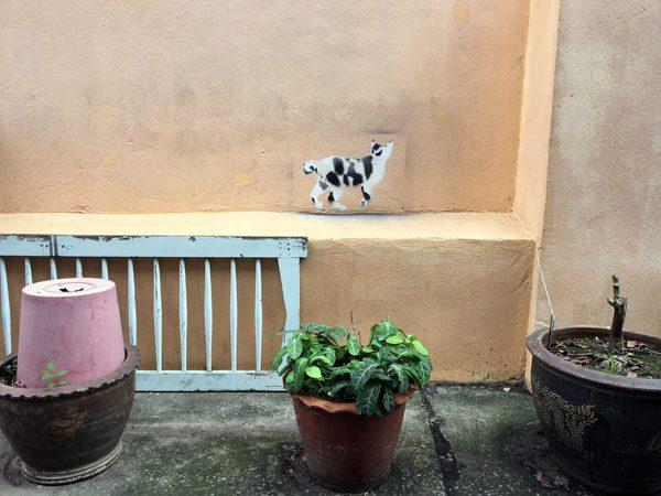 Bangkok Street Art Soi Wanit Cat
