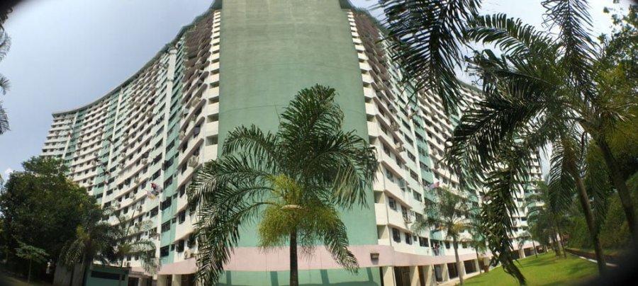 Singapore Dawson Alexandra Butterfly Block