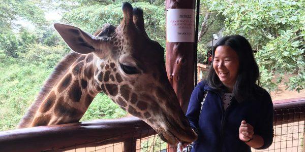 Nairobi, Kenya - Giraffe Centre