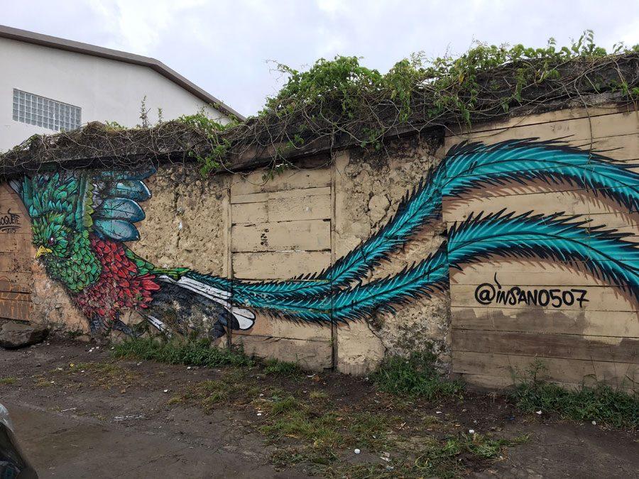 Panama Boquete Quetzal Graffiti