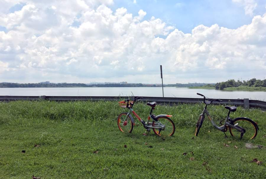 Kranji Reservoir Park Bicycles