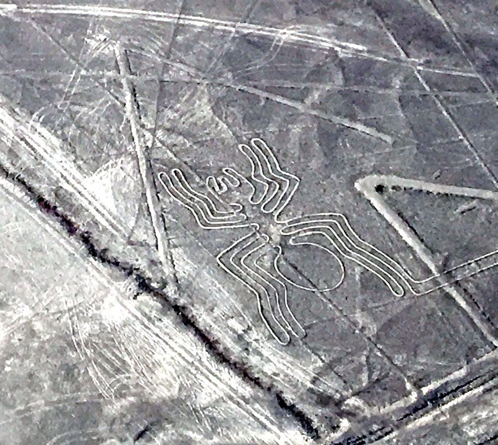 Peru Nazca Lines Spider
