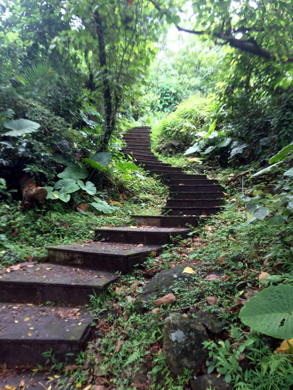 Guishandao 401 Peak Steps