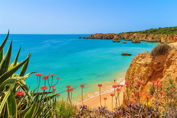 Explore Sandy beach sailing yacht Portugal