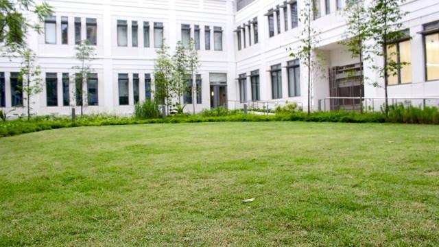 Cendana Courtyard