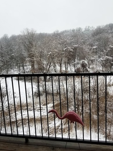 lawn flamingo on a snowy day