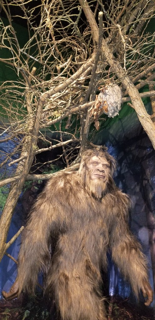 Sasquatch at Beyond the Lens in Pigeon Forge