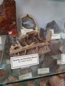 New Mexico Bureau of Geology Mineral Museum quartz on petrified wood