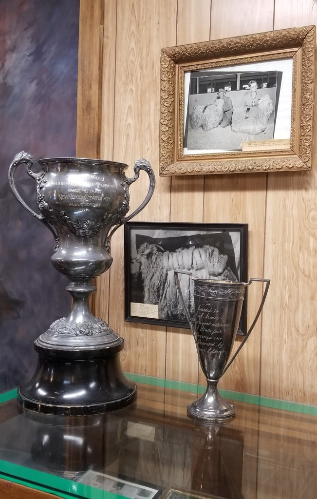 Mohair Growers Trophies at Geronimo Springs Museum