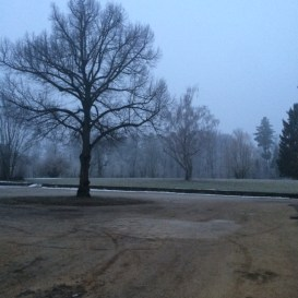 The courtyard, host to many events last summer, in a very frosty state.