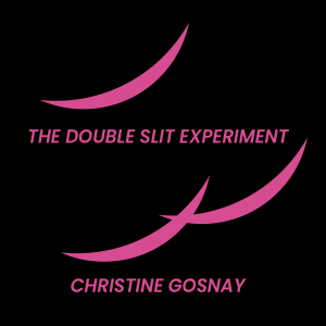 The Double Slit Experiment by Christine Gosnay