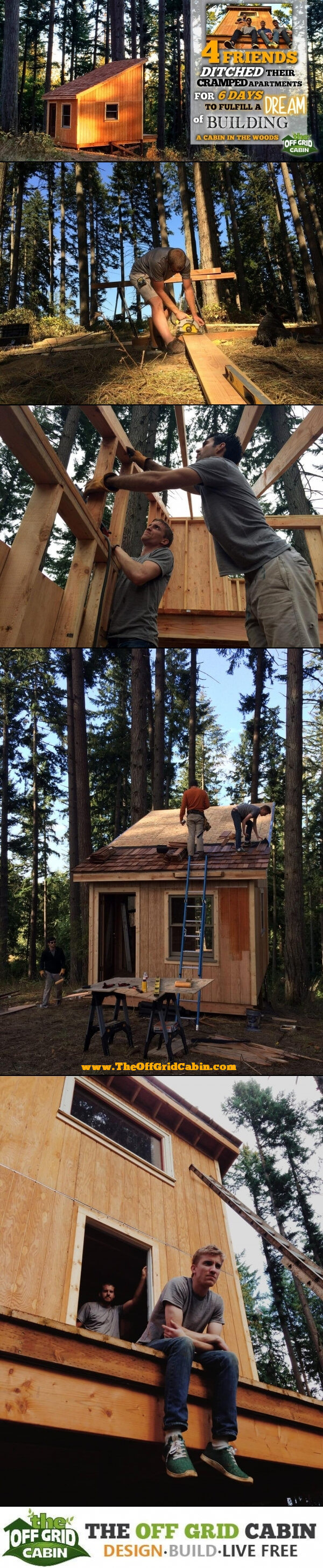 The 6 Day Cabin Build Pinterest Image