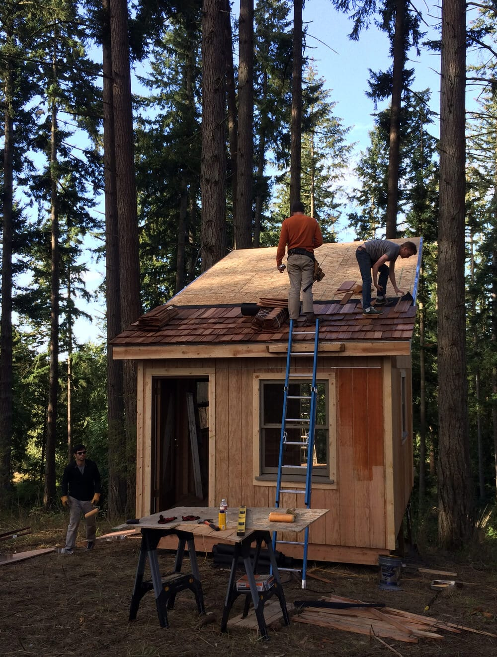 off grid cabin six day cabin day 6-2