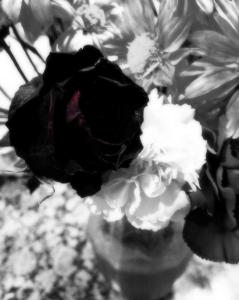Screen Shot 2013-10-20 at 10.10.14 AM