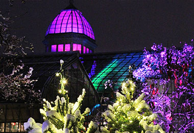 merry-and-bright-at-franklin-park-conservatory