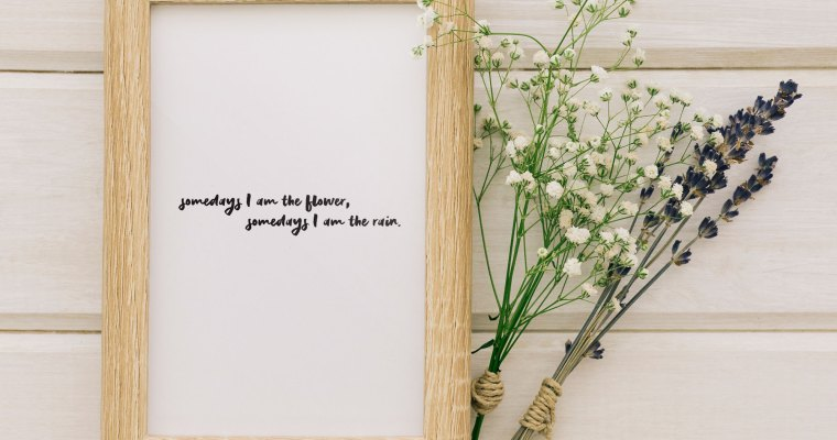 Somedays I am the flower, somedays I am the rain – Wall Art