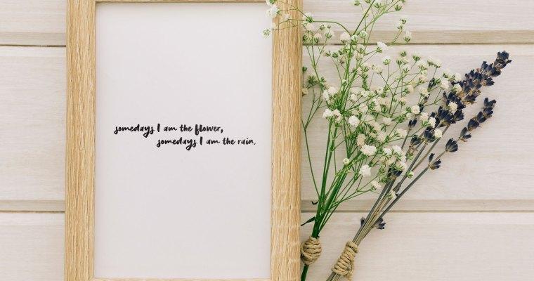 Somedays I am the flower, somedays I am the rain – Wall Art