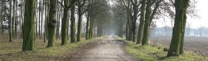 Image of the old dirt road @ http://theolddirtroad.com