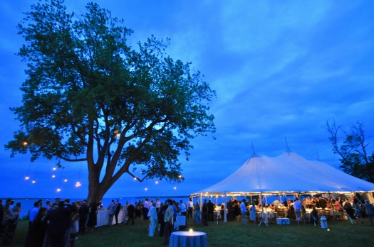 Night time scene with lit tent, silver maple tree and guests milling about.