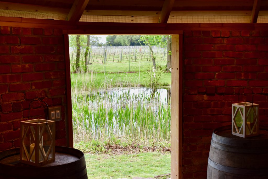 looking out at pond from the door of Ice House