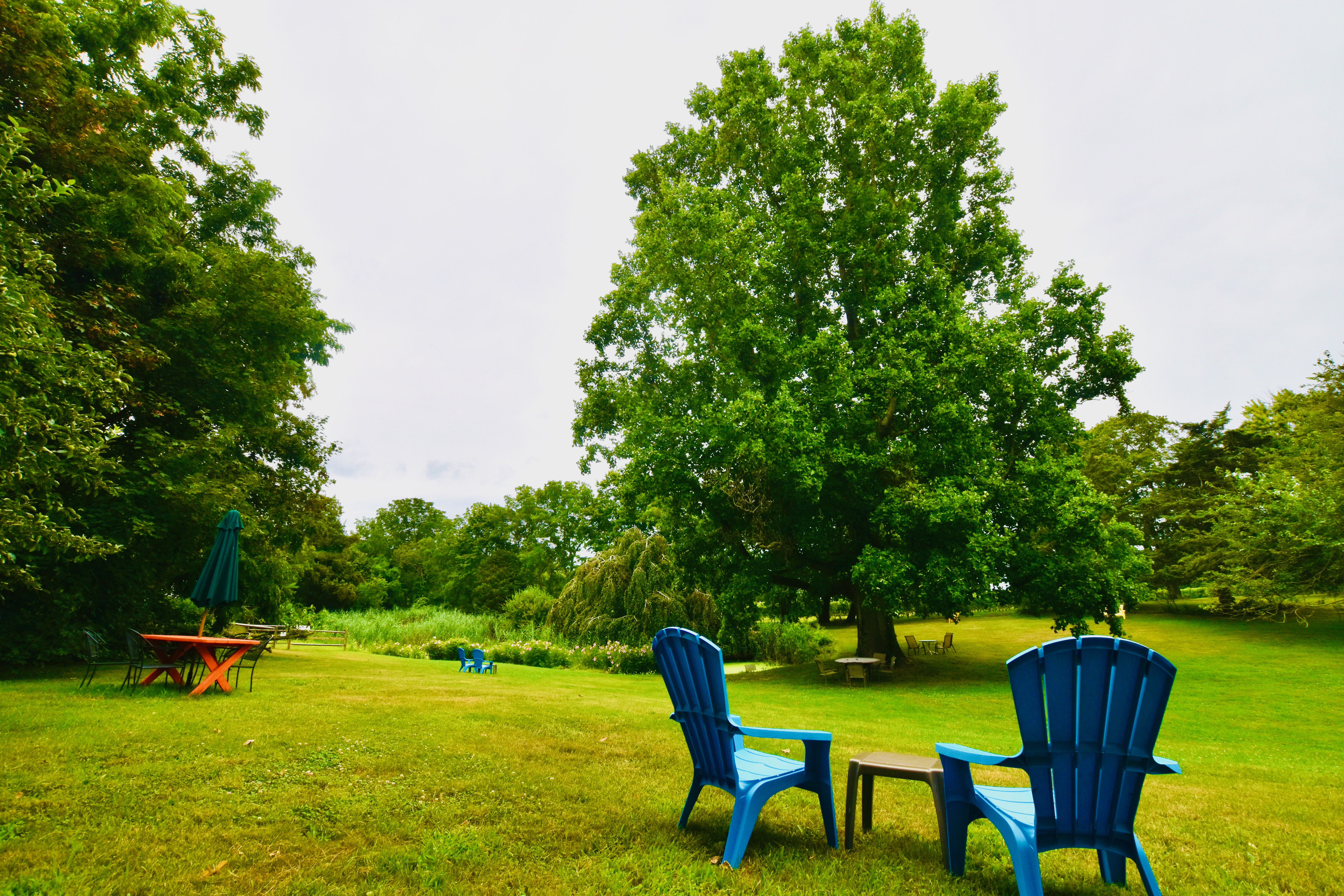 chairs out in our tasting field
