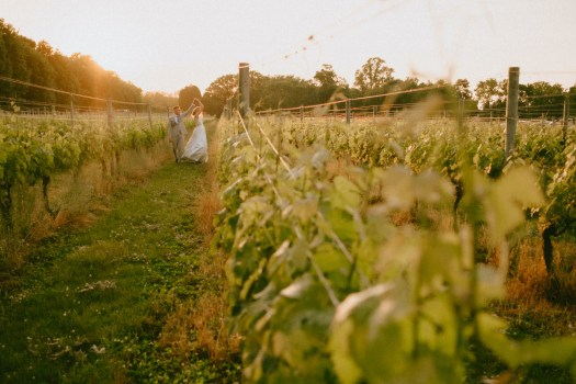 Couple walking in the vines.