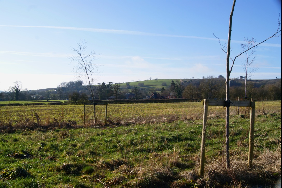 A beautiful sunny winter day in the Cotswolds near Lower Brailes