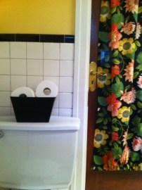 New curtain bathroom