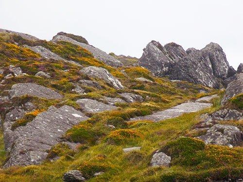 Beenarourke Pass