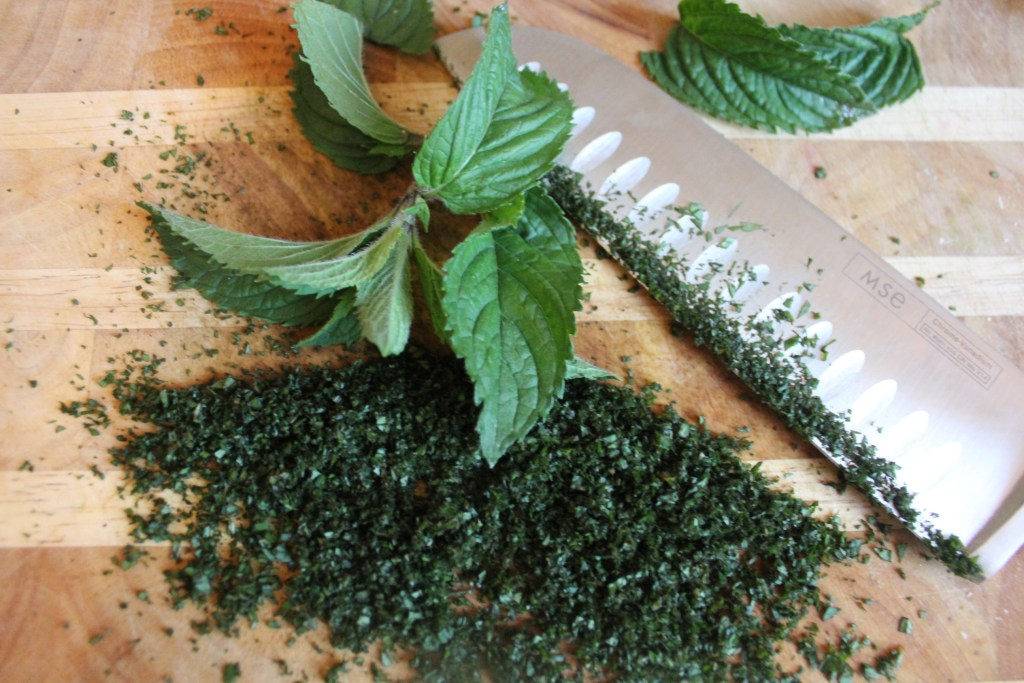 what to do with chocolate mint