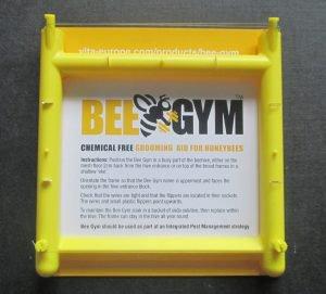Bee Gym