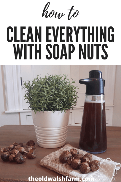 How to use soap nuts