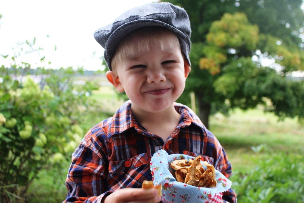 Sweet dried apple rings are a healthy snack enjoyed by young and old.