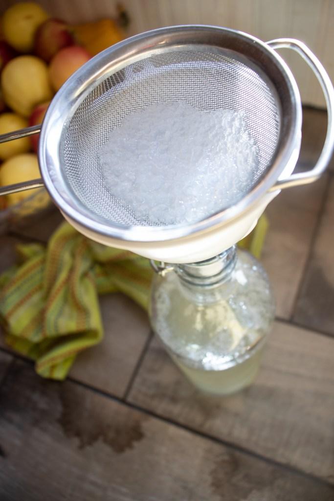 Water kefir grains