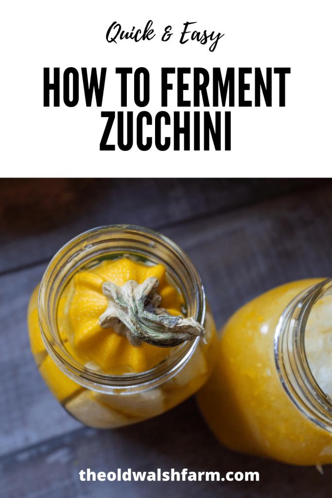 fermented zucchini