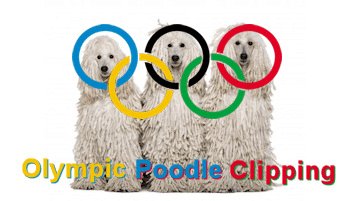 poodle clipping
