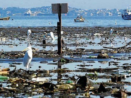 guanabara bay pollution