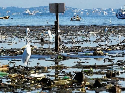 guanabara bay pollution