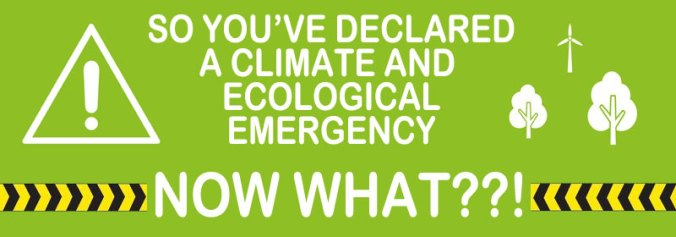 You've declared a climate emergency - now what??!