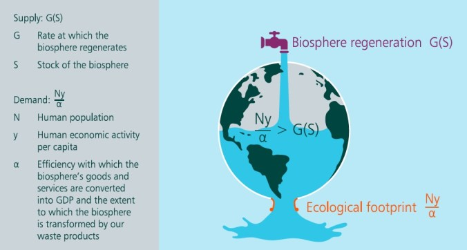 Dasgupta Review's definition of the ecological footprint